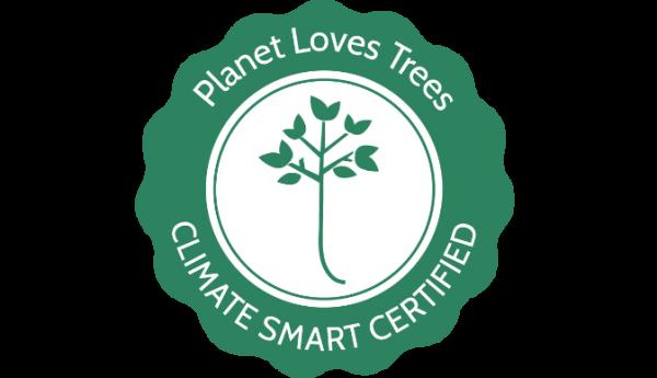 PLT certificate badge