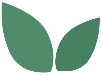 Puut sitovat hiiltä ja päästökompensaatio toimii, kun puu kasvaa.