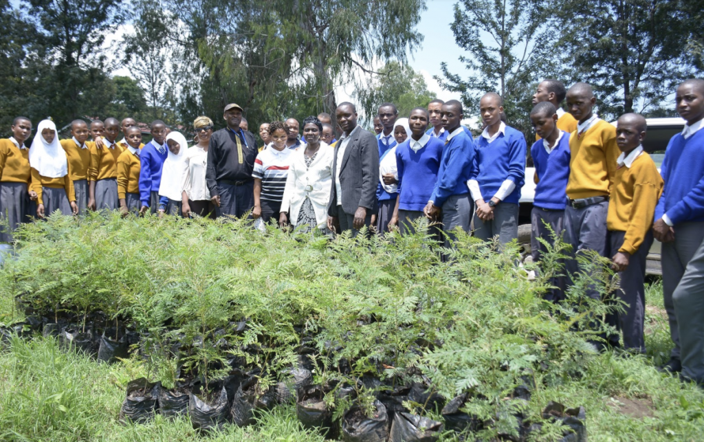 Plantera träd för klimatet