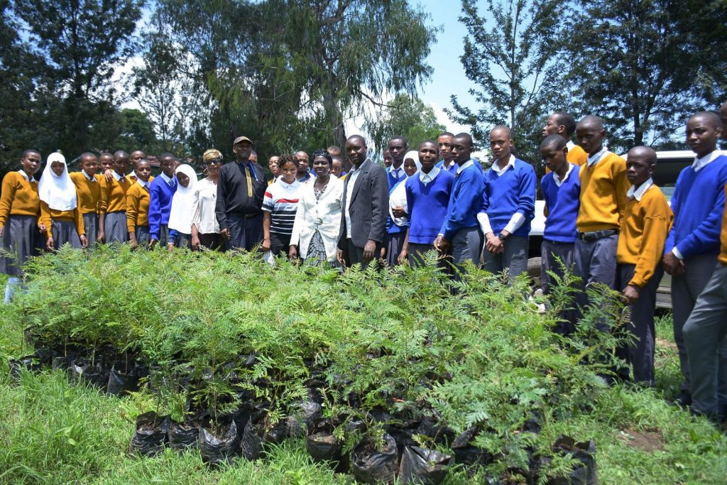 Planting trees in Mringa to carbon offset with tree planting